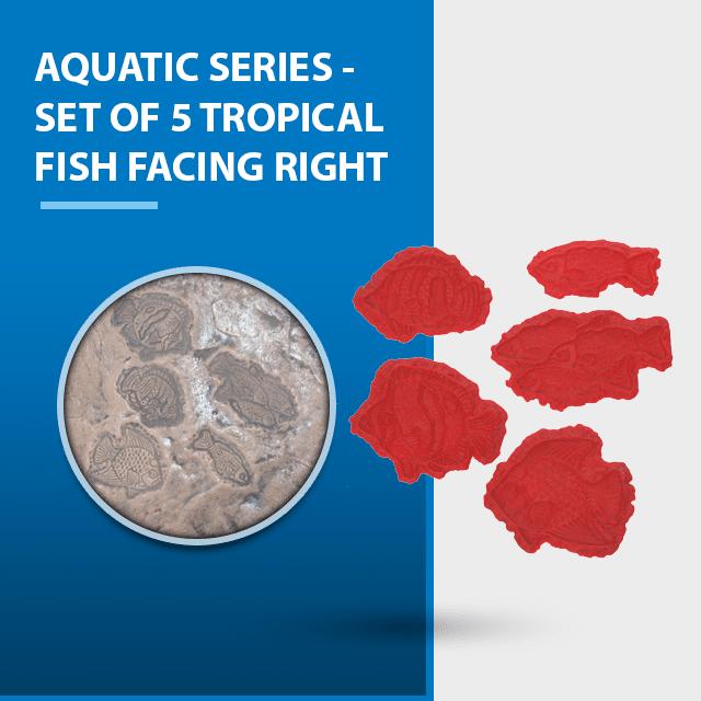 aquatic-series-set-of-5-tropical-fish-facing-right.png