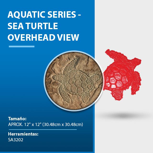 aquatic-series-sea-turtle-overhead-view.png