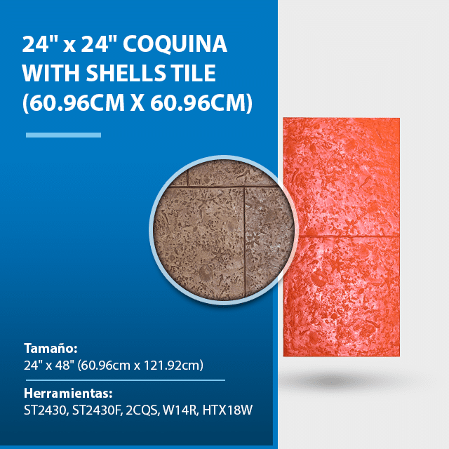 24-x-24-coquina-with-shells-tile.png